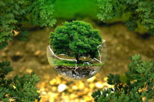 SAPA ochrona środowiska; fot. Pixabay.com